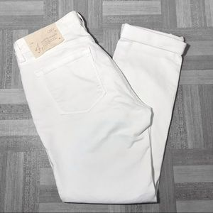 Ann Taylor LOFT Modern Straight Jeans Size 4P NWT